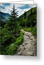 Stone Walkway Into The Valley Greeting Card