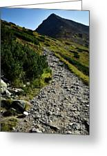 Stone Walkway Towards The Pointed Peak Greeting Card