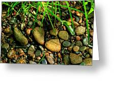 Stones Beside The Stream Greeting Card