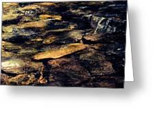 Stoney Water Greeting Card