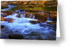 Stony Creek Jefferson National Forest Greeting Card