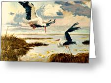 Storks II Greeting Card