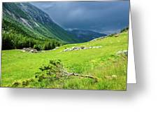 Storm Approaching Over Beautiful Green Field In Norway Greeting Card