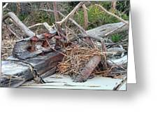 Storm Debris Greeting Card