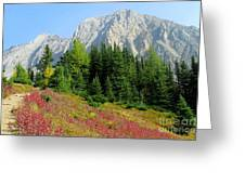 Storm Mountain Greeting Card