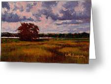 Storm Over Marshes Greeting Card