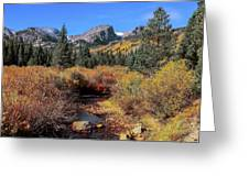 Storm Pass Trail Greeting Card