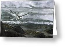 Stormy Flight 2  Greeting Card by Charles Parks