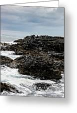 Stormy Giant's Causeway Greeting Card