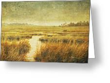 Stormy Marsh Greeting Card