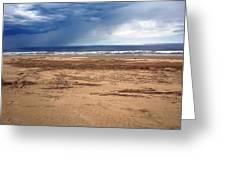 Stormy Nye Beach Greeting Card