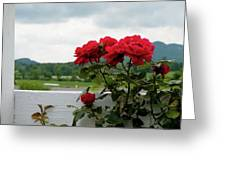 Stormy Roses Greeting Card by Valeria Donaldson