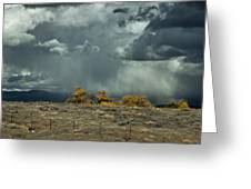 Stormy Wet Greeting Card