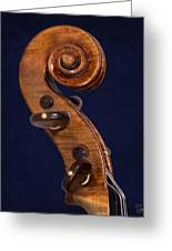Stradivarius Scroll Greeting Card