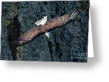 Straight Down Greeting Card