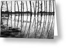 Stranded Trees II Greeting Card