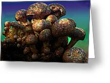 Strange Mushrooms 2 Greeting Card