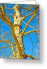 Strange Tree Greeting Card by Guy Ricketts