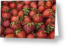 Strawberries -2 Contemporary Oil Painting Greeting Card