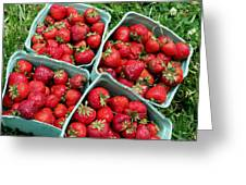 Strawberries In A Box On The Green Grass Greeting Card