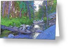 Strawberry Creek 1859 Greeting Card