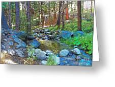 Strawberry Creek 1884 Greeting Card