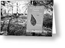 strawberry fields central park New York City USA Greeting Card