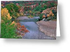 Stream And Fall Color In Central California Greeting Card