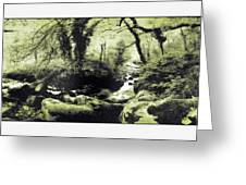 Stream In An Ancient Wood Greeting Card