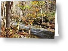 Stream In An Autumn Woods Greeting Card