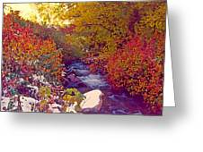 Stream In Autumn  Greeting Card