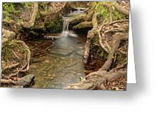 Stream In Judy Woods Greeting Card