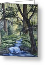 Stream In The Low Country Greeting Card
