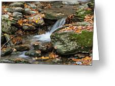 Stream In The Notch Greeting Card