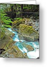Stream Of Beauty Greeting Card