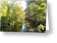 Stream Reflections Greeting Card