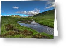 Stream South Iceland Greeting Card