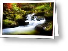 Stream Steps Greeting Card