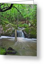 Stream Waterfall Greeting Card
