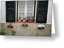 Street Flower Art Greeting Card