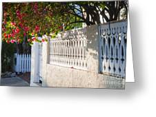 Street In Key West Greeting Card