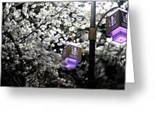 Streetlights In Blossoms Greeting Card