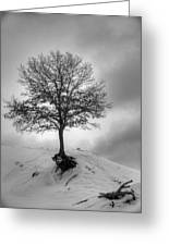 Strength And Hope 2011 Greeting Card
