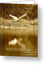 Strength And Peace Greeting Card