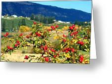 Striking Autumn Red Greeting Card