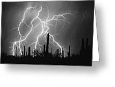 Striking Photography In Black And White Greeting Card