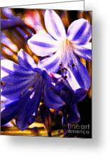 Striped In Blue Greeting Card