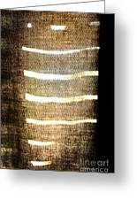 Stripes And Texture Greeting Card
