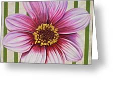 Stripes-dahlia I Greeting Card