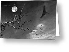 Stroke Of Midnight Greeting Card